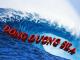 Đông Dương Sea – Nhà cung cấp tay co thủy lực toàn quốc giá rẻ